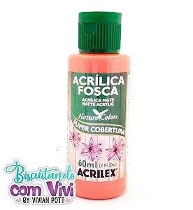 Tinta Acrílica Fosca Acrilex - Coral