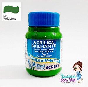 Tinta Acrílica Brilhante Acrilex - Verde Musgo