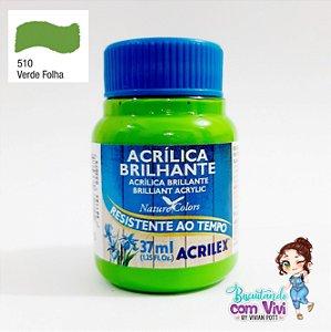 Tinta Acrílica Brilhante Acrilex - Verde Folha