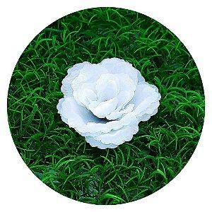 Botão Rosa Branca 7cm sem haste - 50 unidades