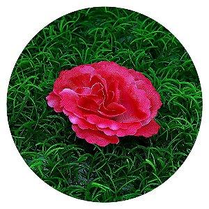 Botão Rosa Pink 7cm sem haste - 50 unidades