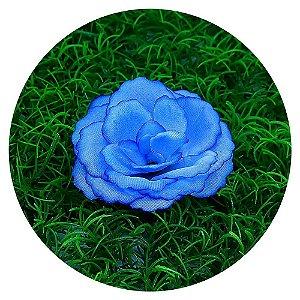 Botão Rosa Azul 7cm sem haste - 50 unidades