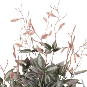 Pendente de Trapoeraba com 5 Galhos Verde Rosa 55 cm