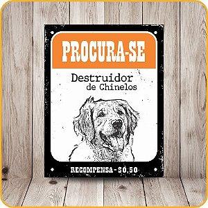 SINALIZE POLIETILENO 18X23 DEC38 PET PROCURA-SE DESTRUIDOR DE CHINELOS