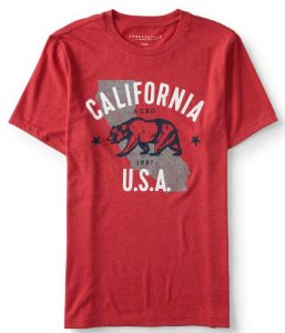 Camisa Aeropostale California Bear Graphic Tee M