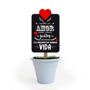 Mini Vaso Lettering Amor Fina Ideia