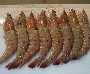 Pescados Moema