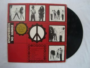 Disco de Vinil - LP - Engenheiros Do Hawaii