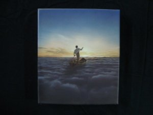 CD + DVD Pink Floyd - The Endless river
