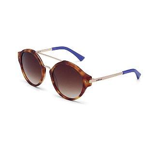 Óculos de Sol Colcci C0024F3134