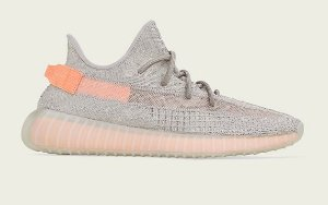 Tênis Adidas Yeezy Boost 350 V2 True Form