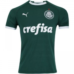 Camisa do Palmeiras 2019 Masculina/Feminina Editavel