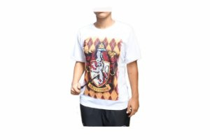 Camiseta Gryffindor + Varinha Harry Potter