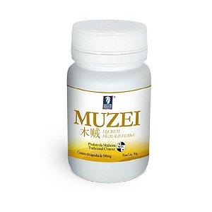Muzei Equiseti Hiemalis Herba – Cavalinha – Doctor Berger