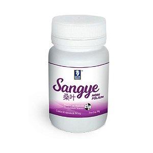 Sangye Mori Folium – Amora – Doctor Berger