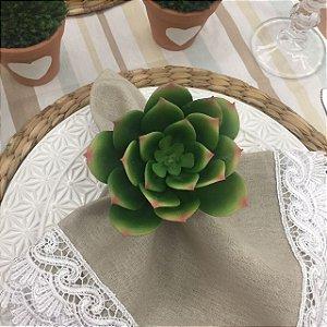 Suculenta Verde com Pontas Color