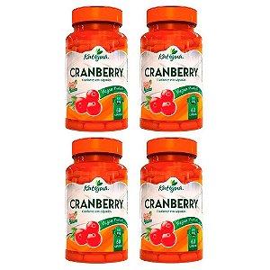 Kit Cranberry Katigua Antioxidante Suplemento 240 Cápsulas