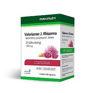 Valeriana - 60 Cápsulas - Maxinutri