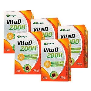 Vitamina D 2000 UI - 5 unidades de 120 Cápsulas - Katigua