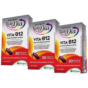 Vitamina B12 Cianocobalamina - 3 unidades de 30 Cápsulas - Katiguá
