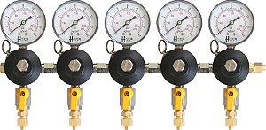 Reguladora Secundária de Pressão para N2 - 5 vias