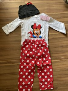 Conjunto minnie manga comprida