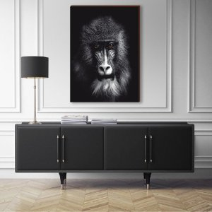 Quadro decorativo Animais Selvagens Macaco - fundo preto [BoxMadeira]