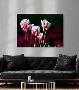 Quadro decorativo Tulipa branca com vermelho [BoxMadeira]