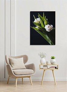 Quadro decorativo Tulipa branca com fundo escuro [BoxMadeira]