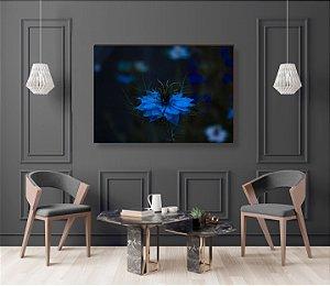 Quadro decorativo Flor Azul [BoxMadeira]