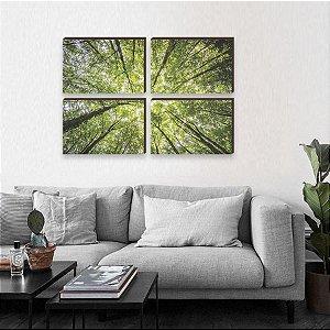 Kit de quadros Paisagem Topo das Árvores [Box de Madeira]