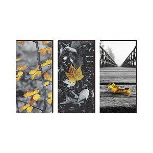 Trio de quadros Folhas amarelas com fundo preto e branco [BOX DE MADEIRA]
