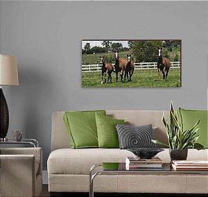 Quadro decorativo paisagem Cavalo mod 05 [BoxMadeira]