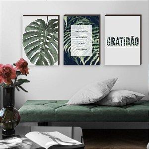 Trio de quadros Ho hoponopono +Folhagem+Gratidão  [BOX DE MADEIRA]