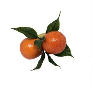 Porta guardanapo laranjinhas
