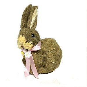 Coelha amêndoa menor