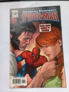 Marvel Knights Spider-Man #13 Importado