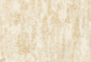 Papel de parede Trend (clássico) - Cód. 2464