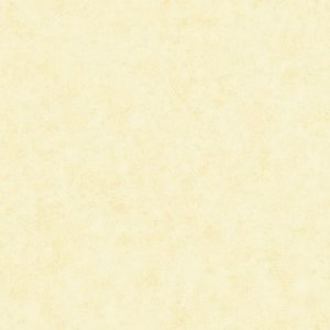 Papel de parede The Yong Ones (Moderno) - Cód. YM2382