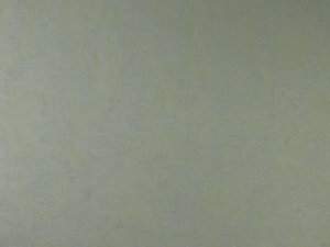 Papel de parede Eros (clássico) - Cód. ES 0805