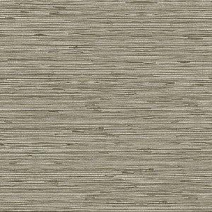Papel de parede Choice premier (Liso) - Cód. CP 9066