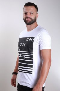 CAMISETA ESTAMPA FRONTAL HENZZU