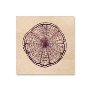 Print - Wood Circle