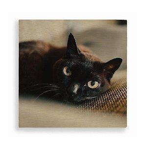 Quadro de Madeira - Gato preto