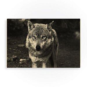 Quadro de Madeira - Wolf Gray