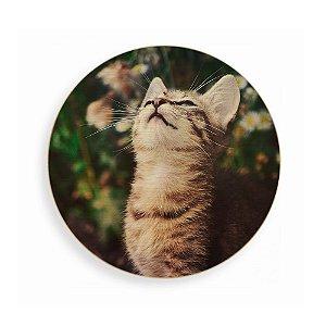 Quadro de Madeira - Kitten