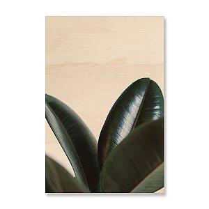 Print - Planta II