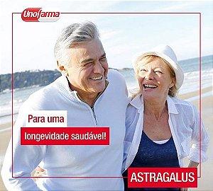 ASTRAGALUS 500MG 60 CÁPSULAS -ENERGIA - PROTEÇÃO HEPÁTICA