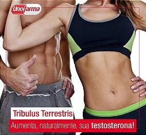 TRIBULUS TERRESTRIS 500MG 60 CÁPSULAS - MASSA MUSCULAR E AUMENTO DE LIBIDO