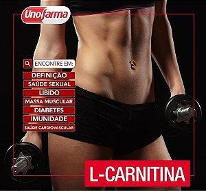 L-CARNITINA 1000MG 300 ML - DEFINIÇÃO MUSCULAR - SAÚDE SEXUAL
